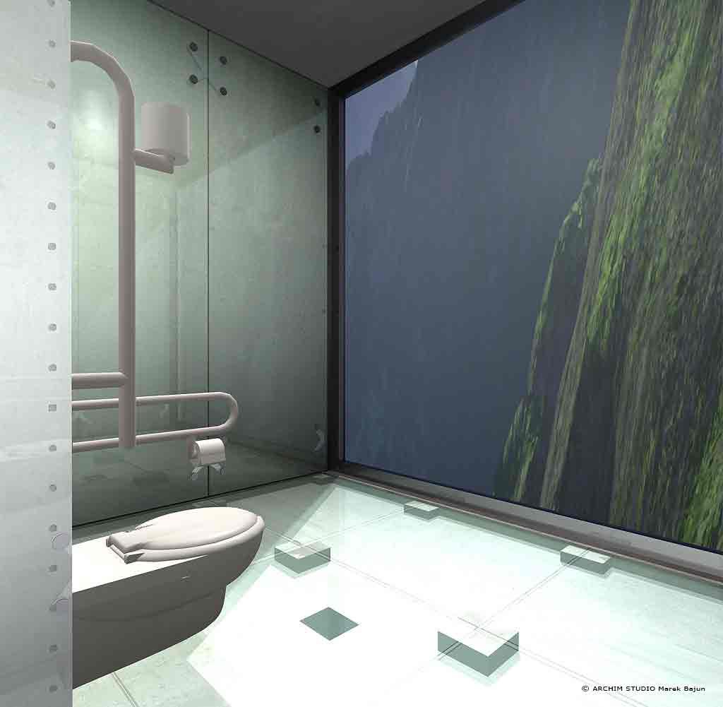 Projekt toalety publicznej