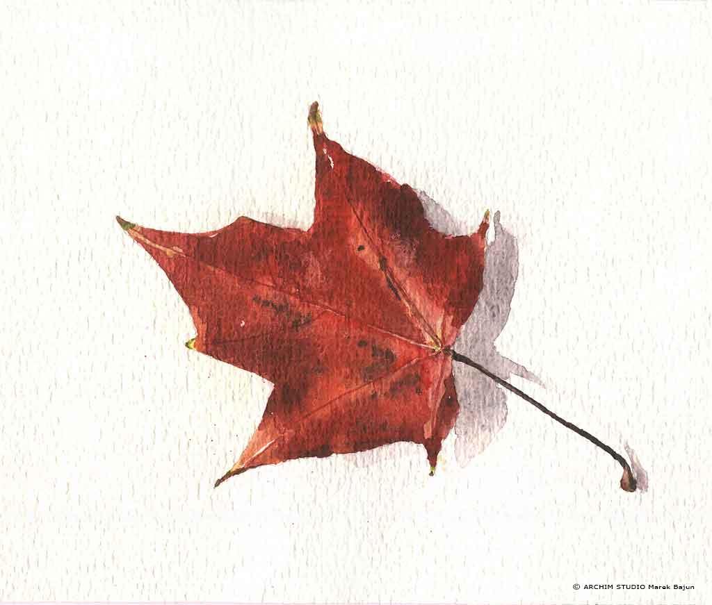 Akwarela jesienny liść