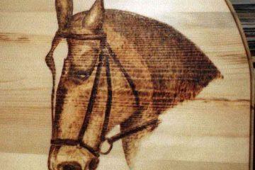 Głowa konia- portret wypalany