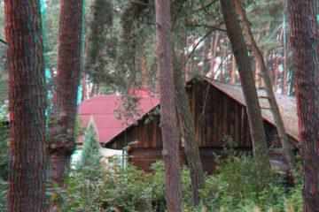 Domy w lesie- anaglif