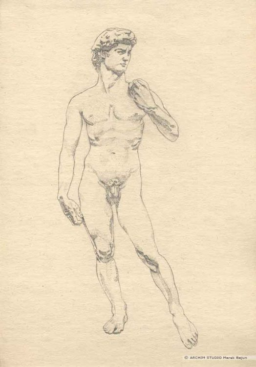 Rysunek rzeźby Dawida