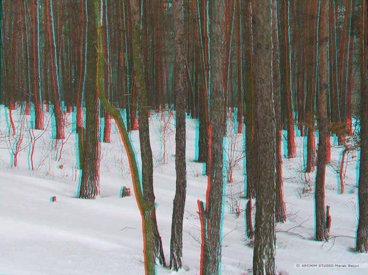 Zimowy las- anaglif